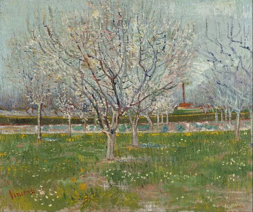 """Orchard in Blossom (Plum Trees)"" by Vincent van Gogh, 1888"