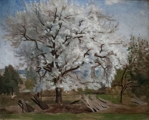 """Apple Tree in Blossom"" by Carl Fredrik Hill, 1877"