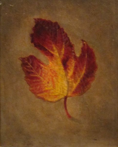 """Maple Leaf"" by Edward Edmondson, Jr., circa 1870"